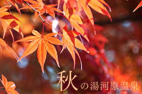 秋の湯河原温泉