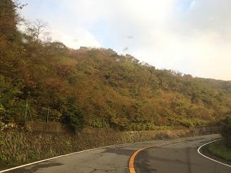 湯河原パークウェイの紅葉